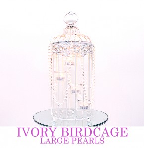Ivory Birdcage with large pearl drapes - comes with mirror plate
