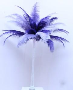 Feather Fantasy - 100cm